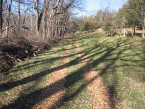 Grassy Hill 1-Sm